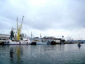 Bayboro-Harbor-Campbell-20116-300x225